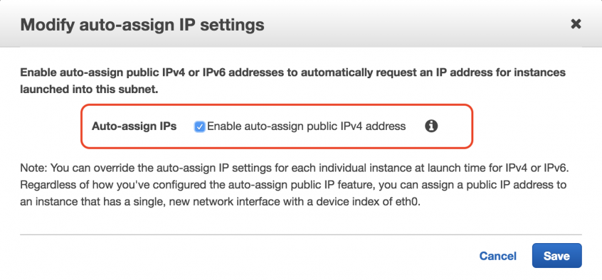 Assign Public IPs on EC2 Instances | DataNext Solutions