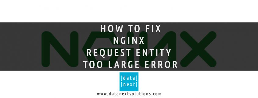 NGINX Request Entity Too Large Error | DataNext Solutions