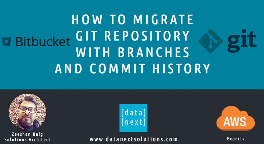 Migrate Git Repository with Branches and Commit History | DataNext